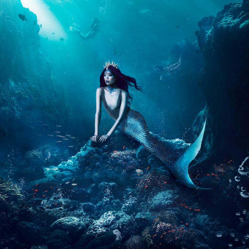 Perfidious Mermaid